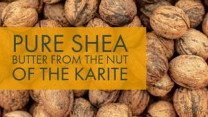 Pure Shea Butter from the nuts of the Shea Tree