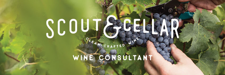 Shop for Clean Organic Wine